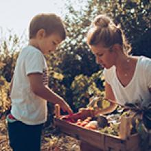 The Growing Trend Of Going Organic
